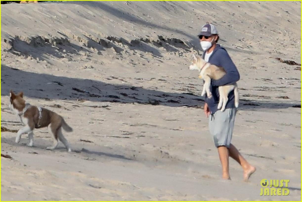 leo dicaprio jack jill huskies walk beach 024456081