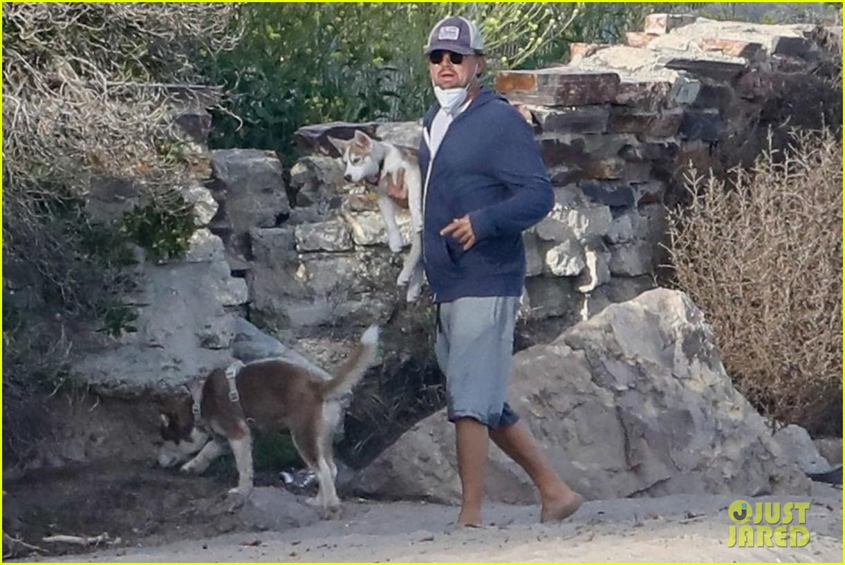 leo dicaprio jack jill huskies walk beach 044456083