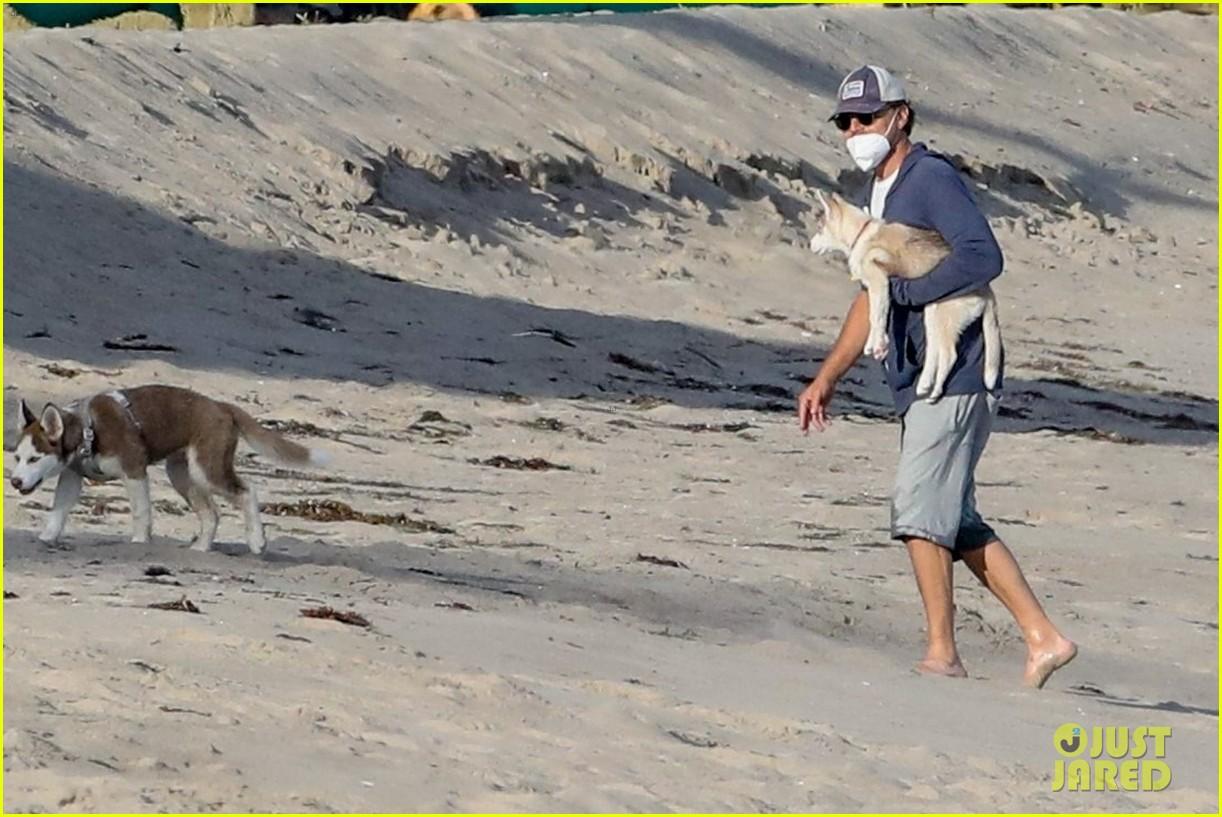 leo dicaprio jack jill huskies walk beach 054456084