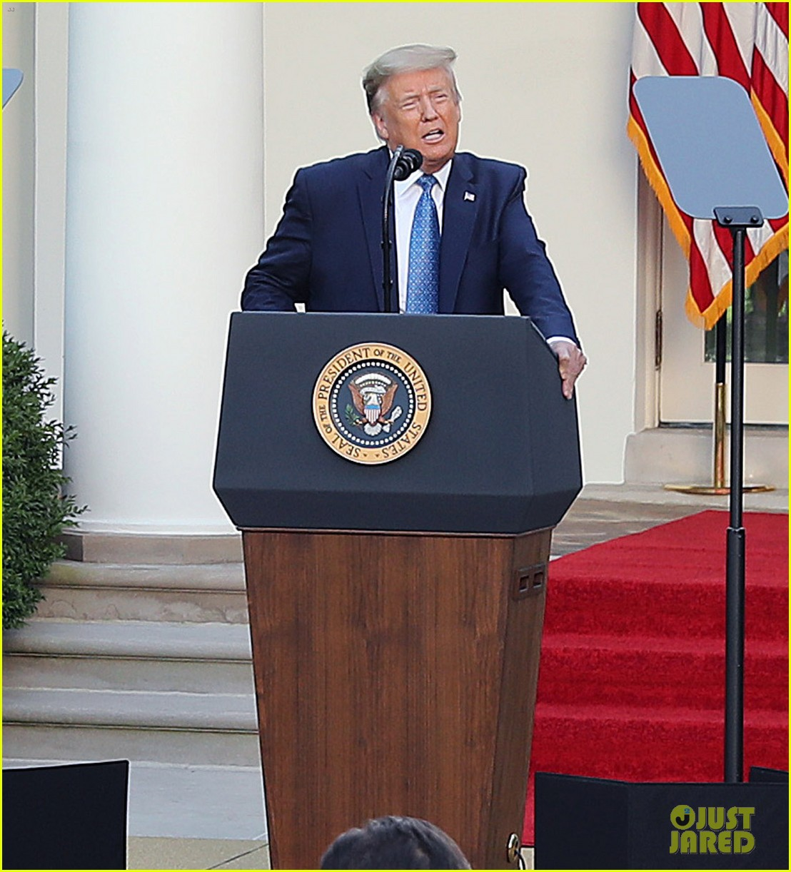 donald trump address in rose garden on protests 024461536