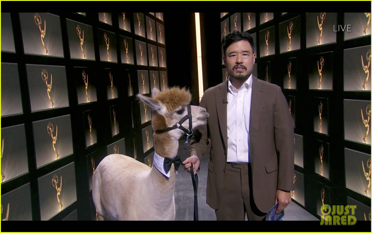 randall park attends emmys 2020 with alpaca 034485662