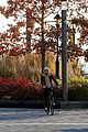 timothee chalamet bike ride in new york 13