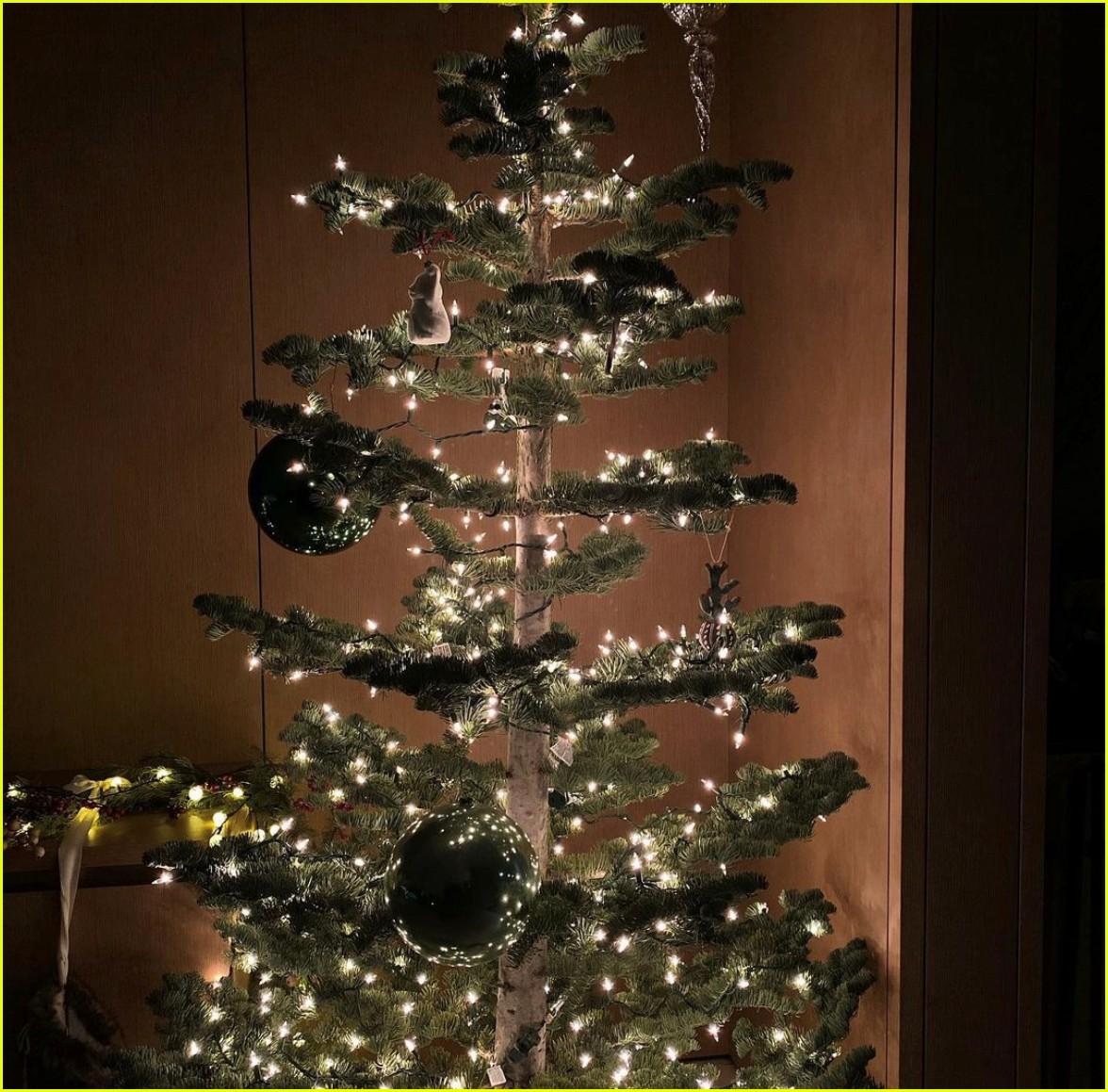 ariana grande christmas with dalton gomez 074511854