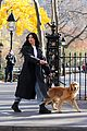 hailee steinfeld jeremy renner with lucky the pizza dog 04