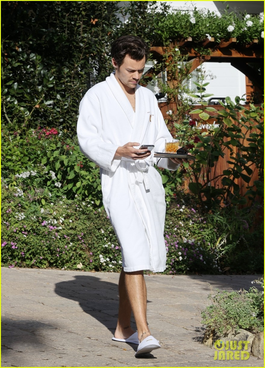 Harry Styles Wore A Bathrobe Slippers For His Manager S Wedding Photos We Have All The Pics Photo 4514846 Glenne Christiaansen Harry Styles Jeffrey Azoff Olivia Wilde Pictures Just Jared