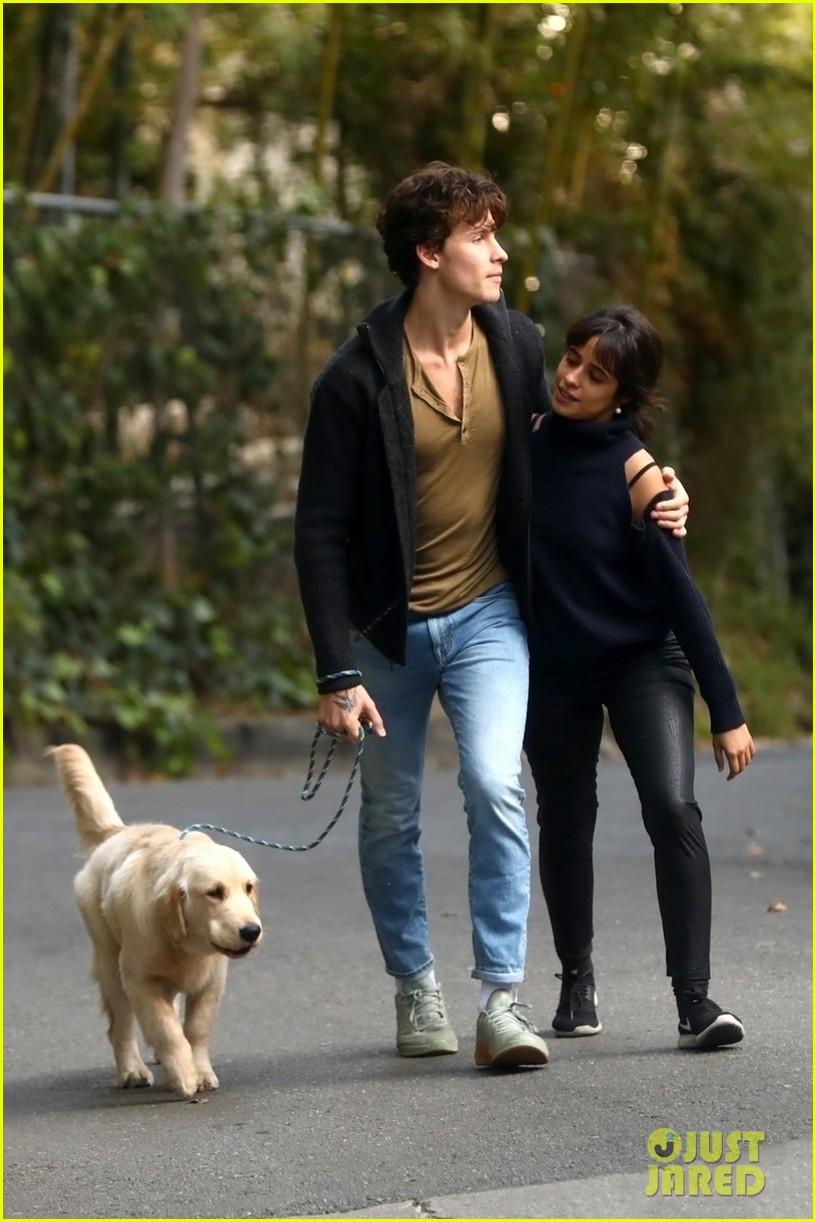 shawn mendes camila cabello share kiss walking dog 264535219