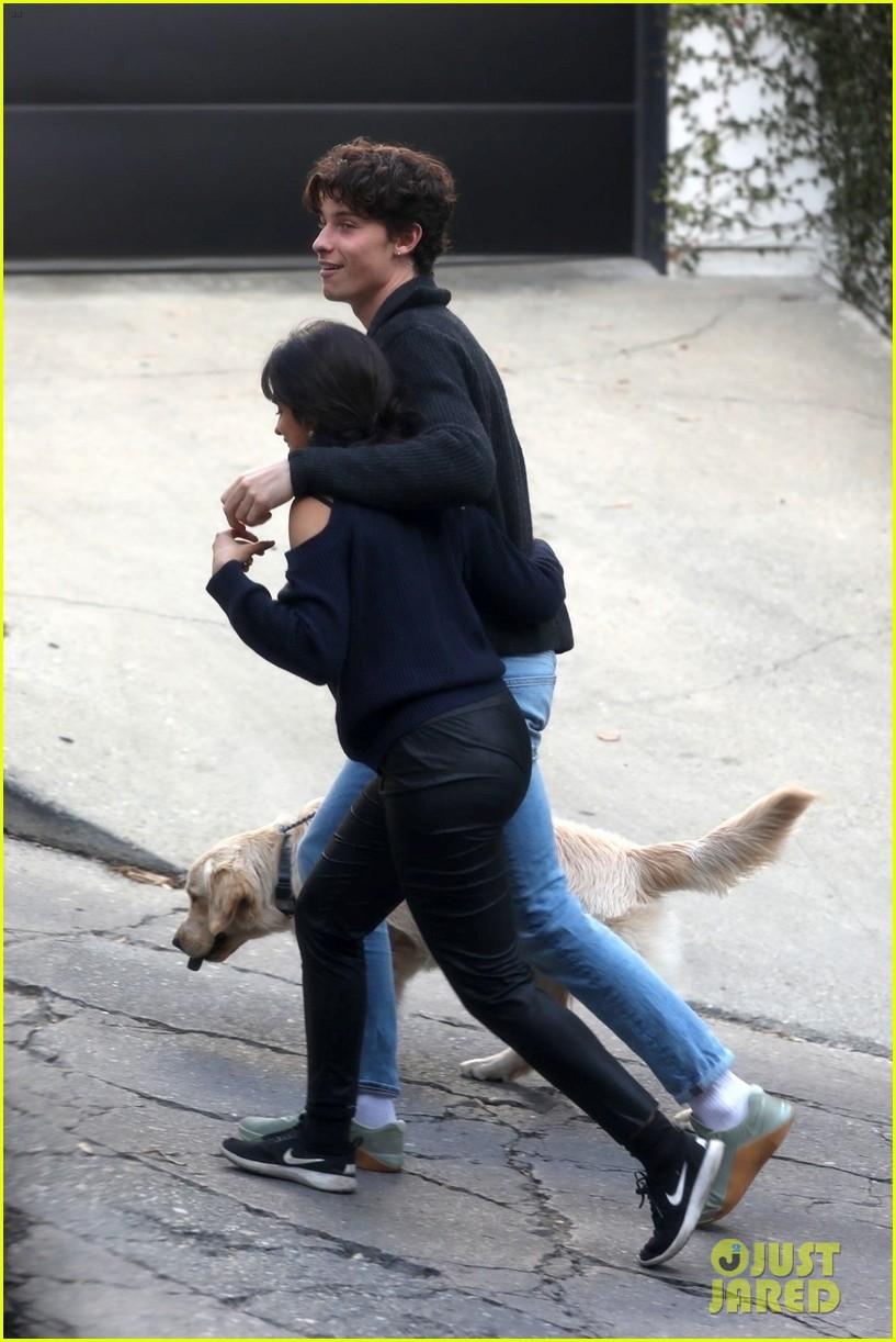 shawn mendes camila cabello share kiss walking dog 294535222