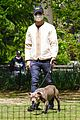 justin theroux takes his dog kuma to a park 05