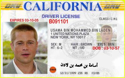 Brad Pitt's Driver's License