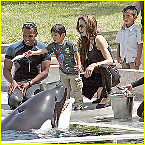 Angelina Jolie and the Killer Whales
