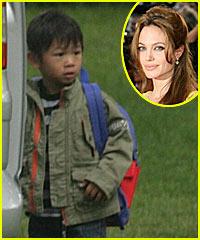 Angelina Jolie's Marineland Madness