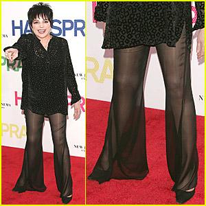 Liza Minnelli's Sheer Madness