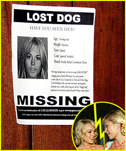 Paris Hilton: Lindsay Lohan is a Lost Dog