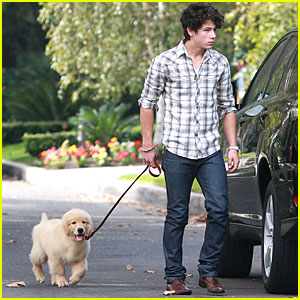 Nick Jonas Has Puppy Love