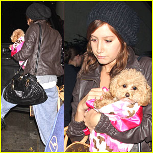 Ashley Tisdale Gets Mushy With Maui