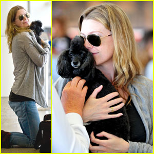 Ellen Pompeo Has Poodle Puppy Love