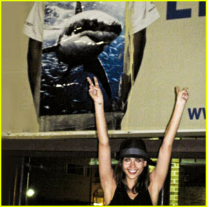 Jessica Alba's Shark Attack: Investigated For Vandalism