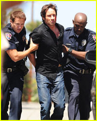 David Duchovny Gets Arrested