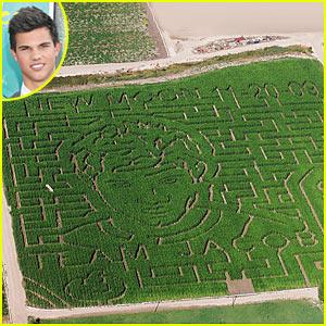 Taylor Lautner's Face Drawn Into Corn Field
