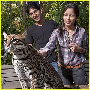 Freida Pinto & Dev Patel: San Diego Zoo Sweethearts
