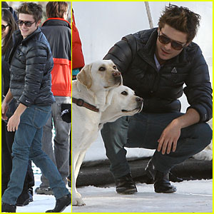 Zac Efron Plays with Pups