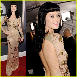 Katy Perry - Grammys 2010 Red Carpet