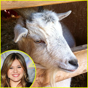 Kelly Clarkson Receives Goat as Christmas Gift