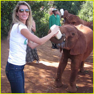 Gisele Bundchen Feeds a Baby Elephant in Africa