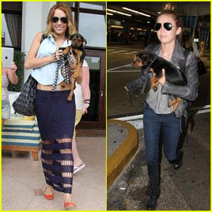 Miley Cyrus & Happy Hit Miami