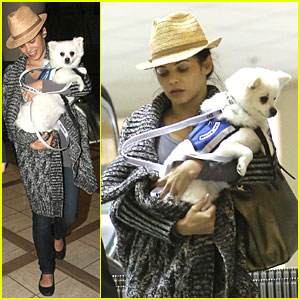 Pregnant Jenna Dewan Covers Baby Bump with Pet Pooch!