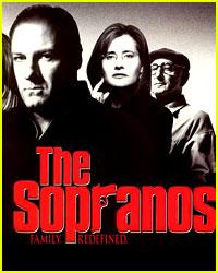 James Gandolfini Comments on 'Sopranos' Movie