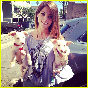 Ashley Greene Adopts Two Puppies!