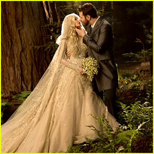 Sean Parker & Alexandra Lenas: Wedding Photo!