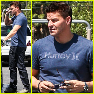 David Boreanaz Talks Working with Neil LaBute for 'Full Circle'