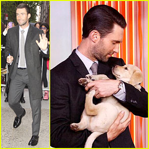 Adam Levine Cradles Adorable Puppy on 'Today Show'!