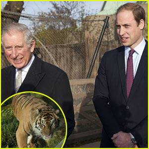Prince William Works with United for Wildlife to Save Animals!