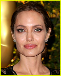 Angelina Jolie's Private Plane Grounded by the FAA