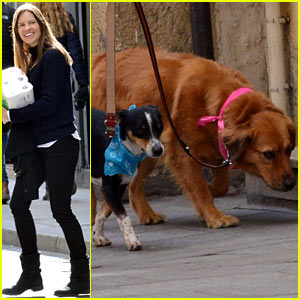 Hilary Swank Treats Her Two Rescue Pups to a Leisurely Parisian Stroll