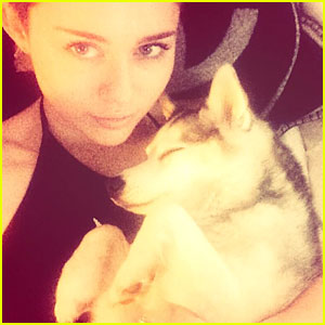 Miley Cyrus Is Heart Broken Over Precious Pet Pooch Floyd's Death