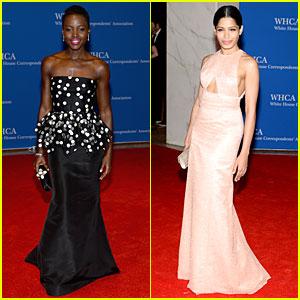 Lupita Nyong'o & Freida Pinto Are Breathtakingly Gorgeous at White House Correspondants' Dinner 2014
