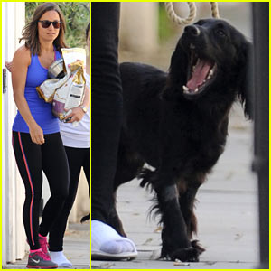 Pippa Middleton & Kate Middleton's Royal Dog Lupo Have a Dog Day Afternoon!