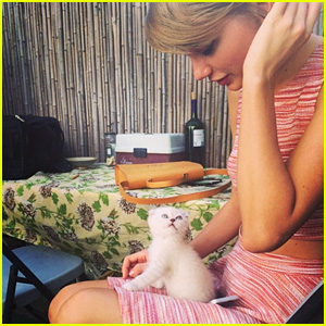 Taylor Swift Introduces New Kitten, Names Her After Favorite 'Law & Order' Character!