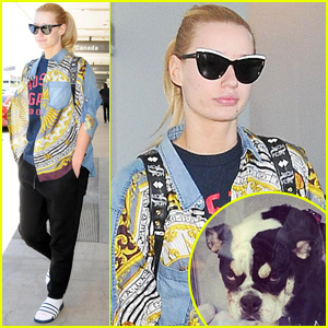 Iggy Azalea's Poor Pup Jelli Was Attacked by a Coyote!