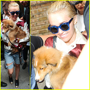 Miley Cyrus Smiles Wide With Puppy Emu By Her Side