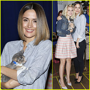 Rose Byrne Looks For the Right Kittens For 'You Can't Take It With You'!