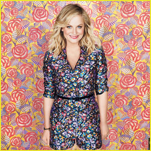 Amy Poehler Is Bold & Colorful For 'O' Magazine November 2014 Feature