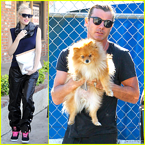 Gwen Stefani's Husband Gavin Rossdale Didn't Want to F--k Up 'Hawaii Five-0'