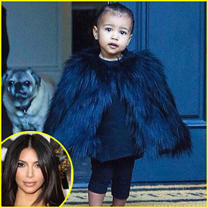 Kim Kardashian Shares Adorable New Photos of North West