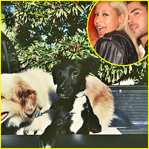Sami Miro & Zac Efron's New Puppy is the Cutest in This New Pic!
