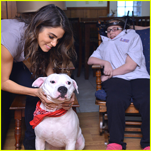 Nikki Reed Makes Surprise Visit To Zeus & O'Hara With Humane Society